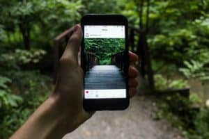 hand holding a cellphone in a forest with the instagram app open